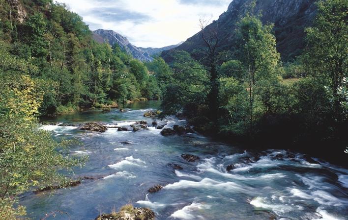 El día que el río Seya cambió de nombre