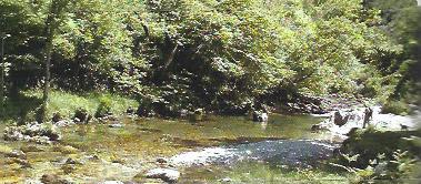 La garganta del río Casaño: Un paraíso perdido a recuperar